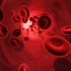 Blood flowing through an artery (Red Globules)